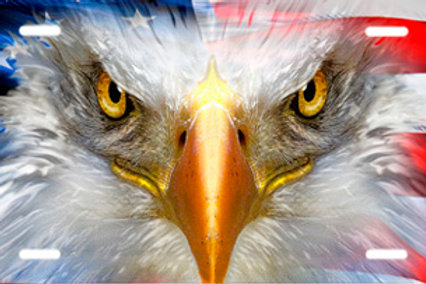 LP00903-Eagle and American Flag