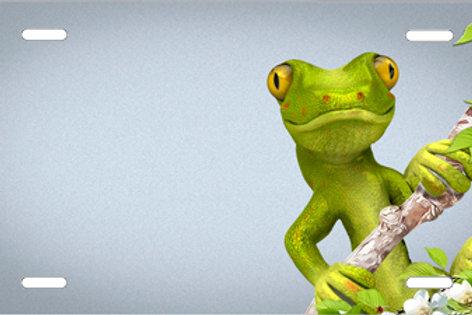 LP1021-Gecko on Gray