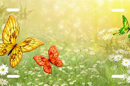 LP00725-Butterflies on Yellow