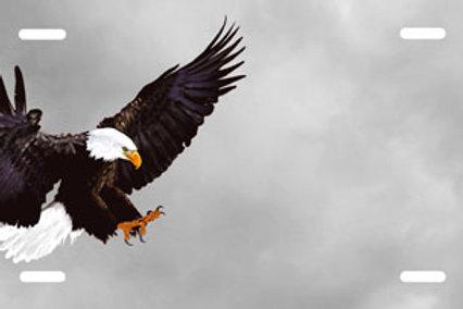 LP00301-Eagle on Grey