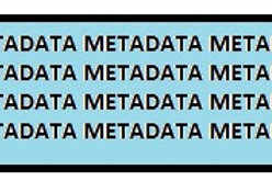 Publishing and Profile fixes/Metadata
