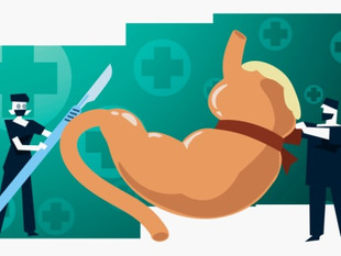 Qual o Risco de Morte com a Cirurgia Bariátrica?