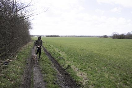 Dog & Walker