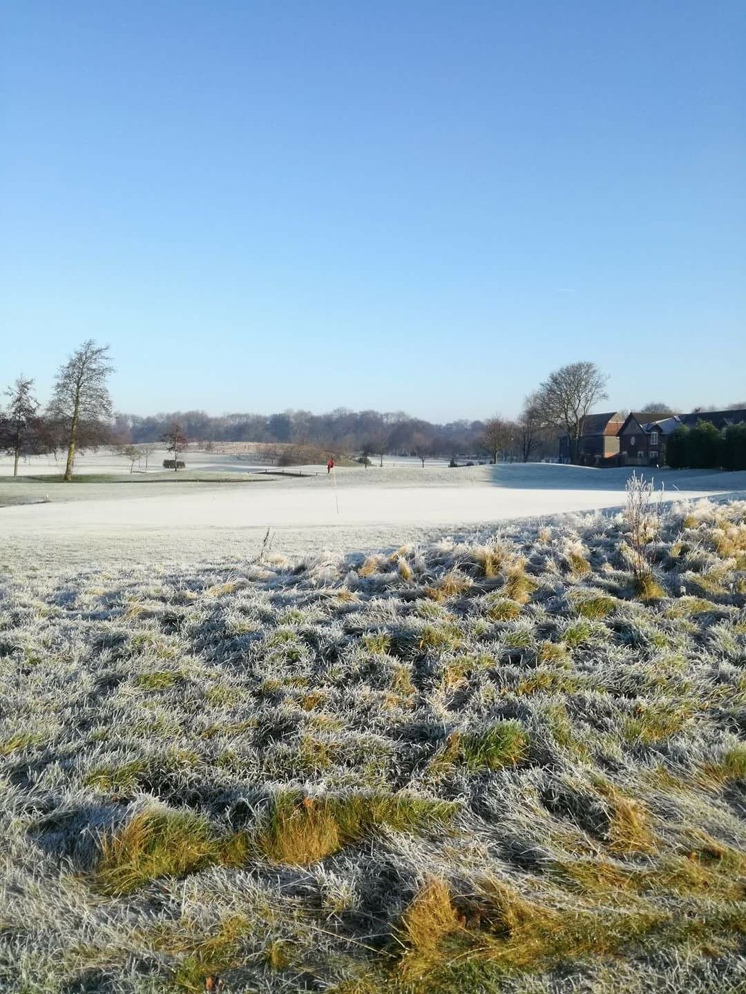Frosty_Golf_Course