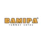 LOGO SKYPE BAMIPA-01.png