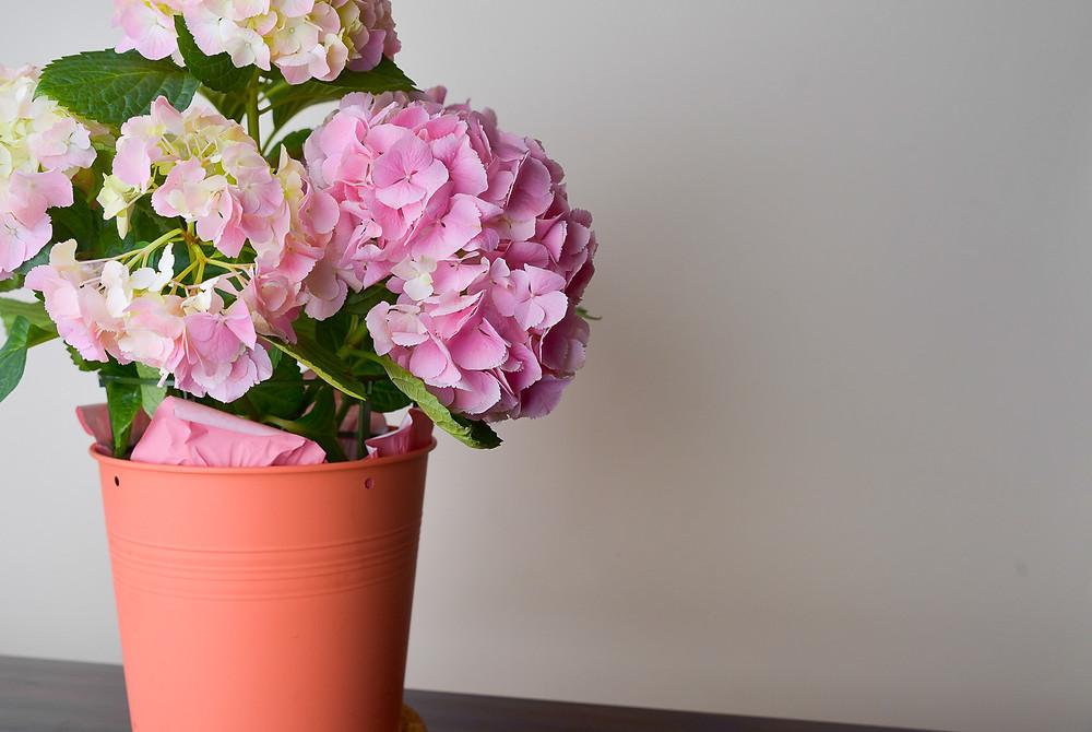 breath..... fresh flowers to help maintain a mood.