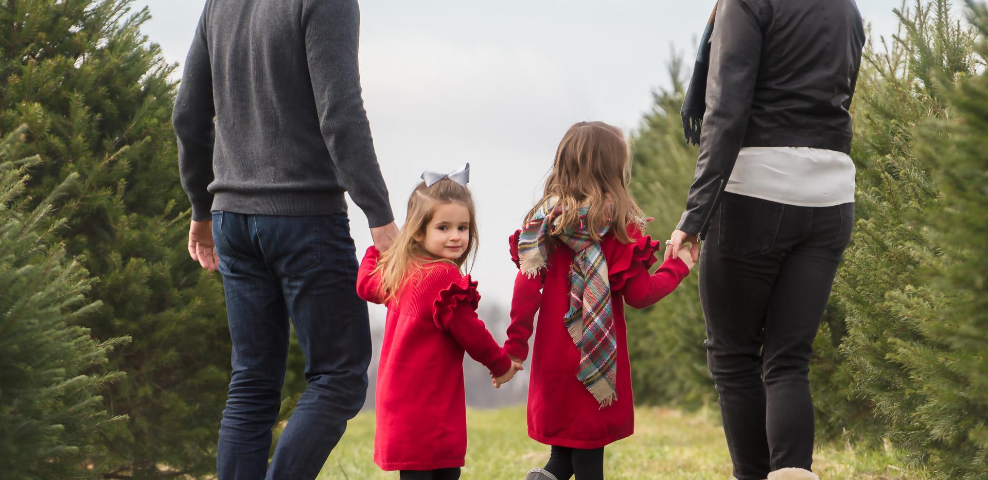 Brooke Tree Farm 2018 (9 of 14).jpg