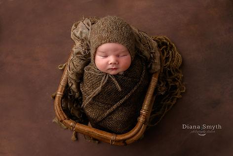 Plymouth Meeting Newborn Photographer Diana smyth photography