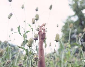 hands (2).jpg