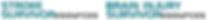 SSR_BIS_logo_2.png