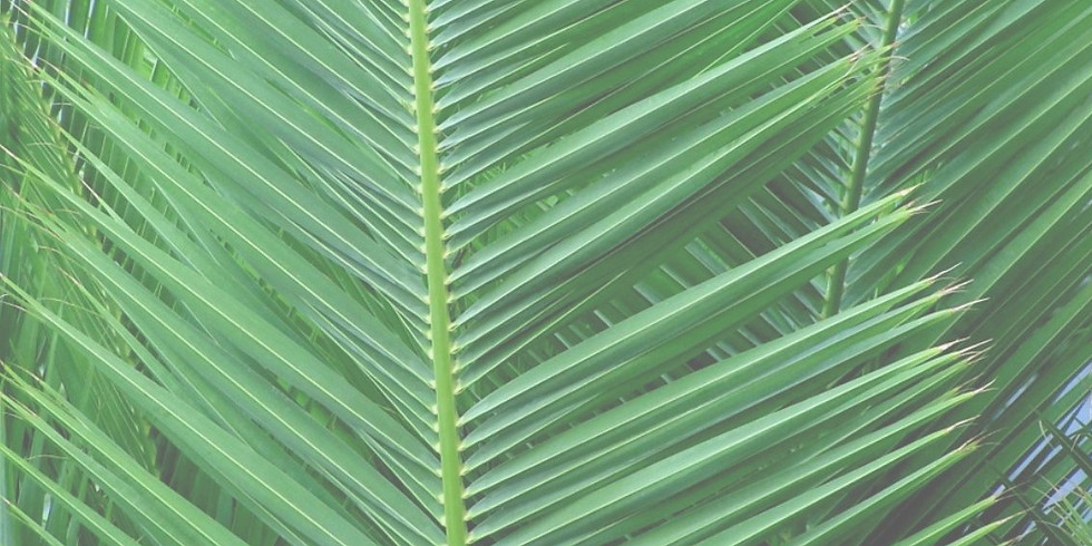 Palm Sunday Palm Parade and Communion
