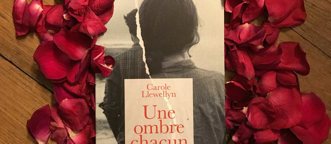 """Bilan du 1er mois de la Sortie d'""""Une Ombre Chacun"""""""