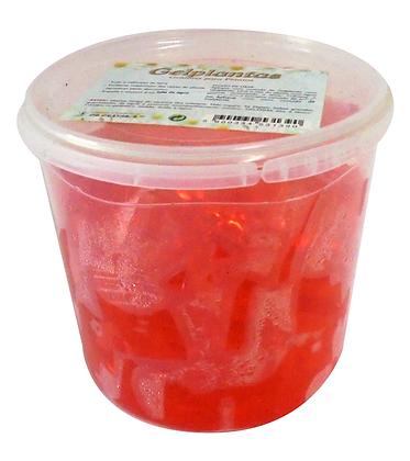 Gel Plantas - Cubos - Vermelho