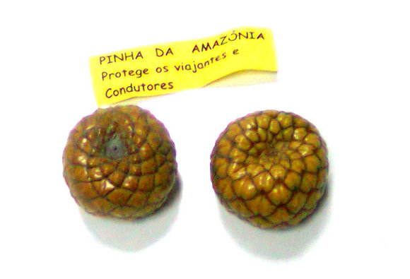 Pinha da Amazónia