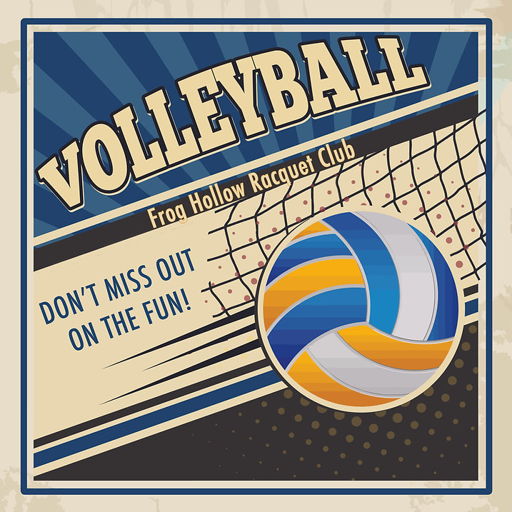 Volleyball at Frog Hollow.jpg