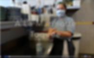 Capture d'écran 2020-06-17 à 09.53.08.