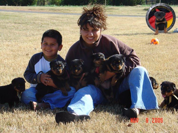 DKV-Rottweilers-Family-4