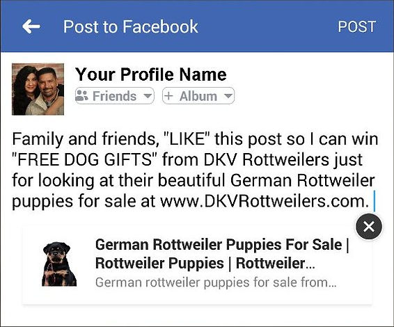 DKV Rottwelers Free Dog Gifts