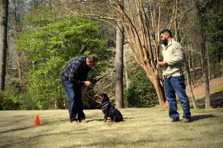DKV-Rottweilers-Trainer-2