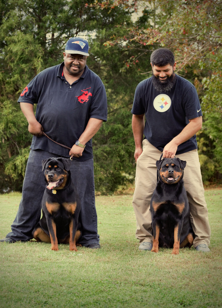 DKV-Rottweilers-Trainer-4