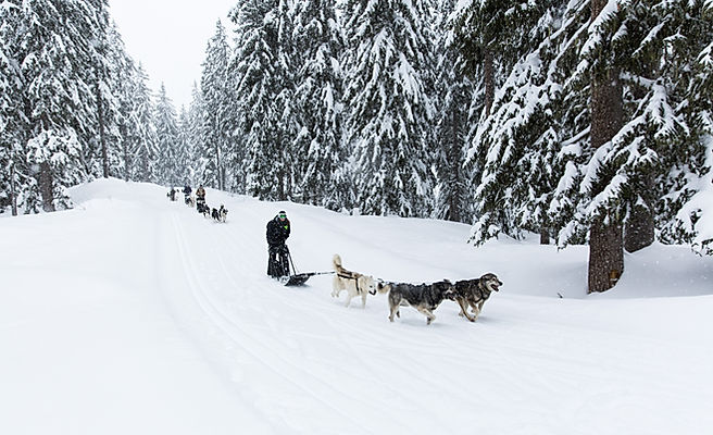 activites-sportives-hiver_edited.jpg