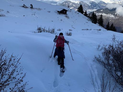 Walking, snow shoeing and ski trekking