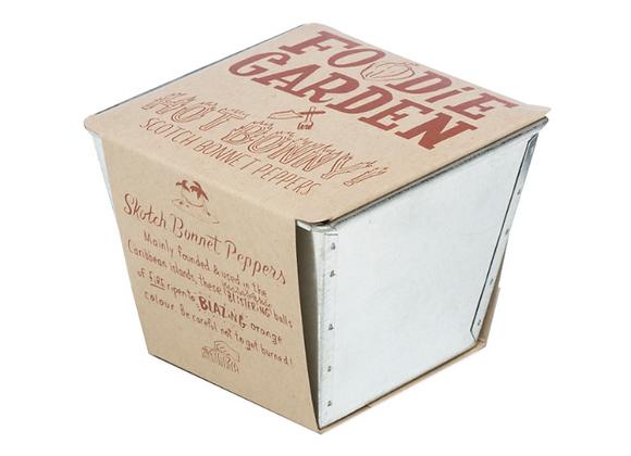 "Foodie Garden Single ""Jardin Gourmand"" - Piment"