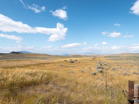 Forschen und Fotografieren in Wyoming