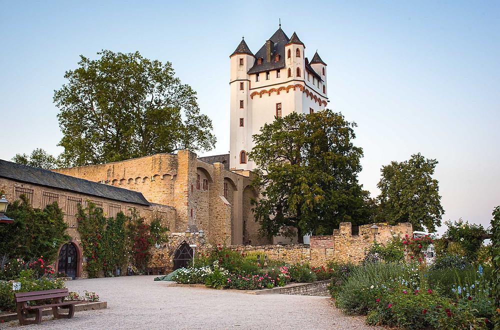 Blick auf die kurfürstliche Burg von Eltville vom Rheinufer aus