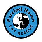Purrfect Haven JUST Logo.png