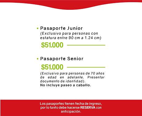 PAGINA WEB ARCHIVo pasaportes-16.jpg