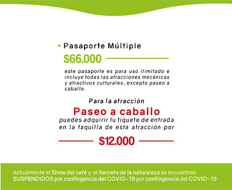 PAGINA WEB ARCHIVo pasaporteees-17.jpg