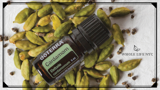 Essential Oil Spotlight: Cardamom