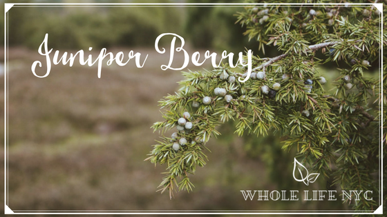 Essential Oil Spotlight: Juniper Berry