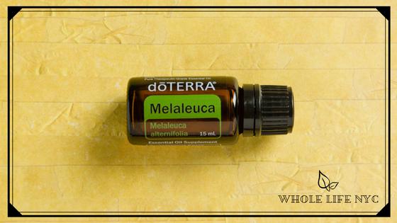 Essential Oil Spotlight: Melaleuca