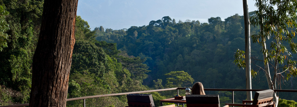 Coffee at The Deck Kaliwa Lodge