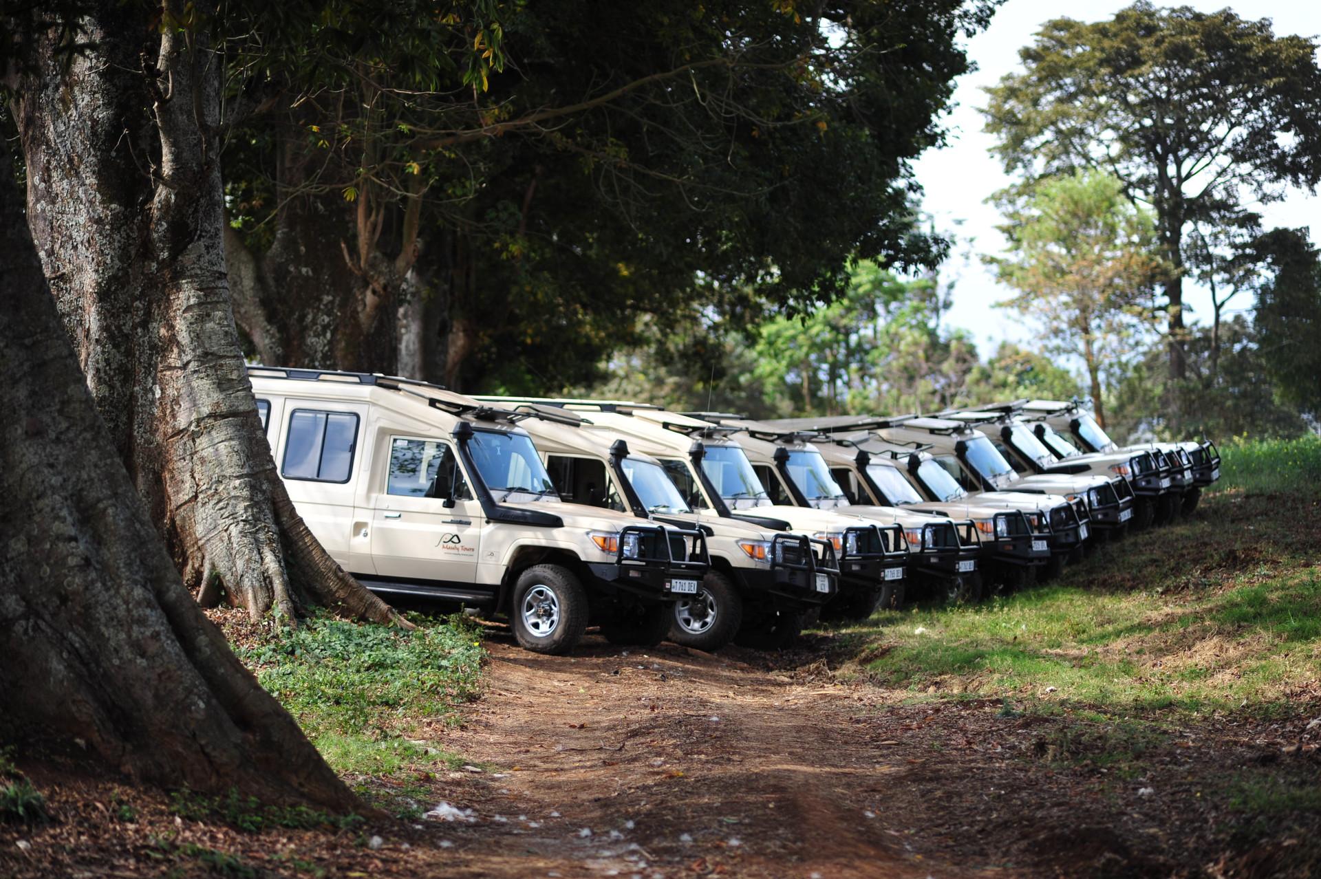 Safari Car
