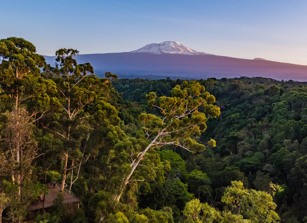 Drone View Kilimanjaro The Deck Kaliwa Lodge