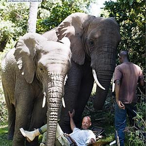 Freunde fürs Leben für Dein Spiegel, Arusha National Park, Tanzania