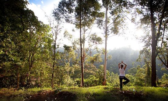 Yoga Retreat Kaliwa Lodge.jpg
