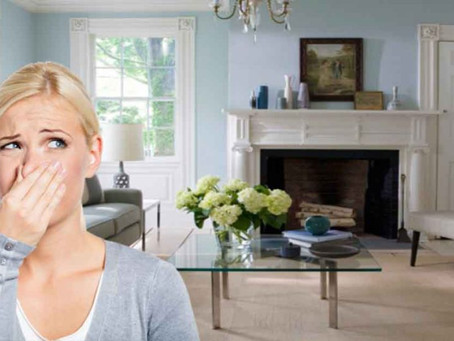 Why do I have a sewer gas smell in my home?
