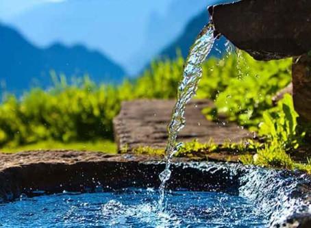 10 Water Saving Tips