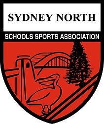 SNSSA_logo_high_res_edited_edited.jpg