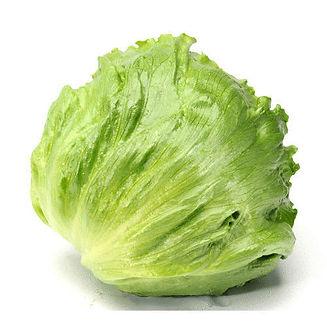 iceberg lettuce.jpeg
