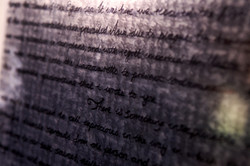 Letters @ Lyme - Trust New Art