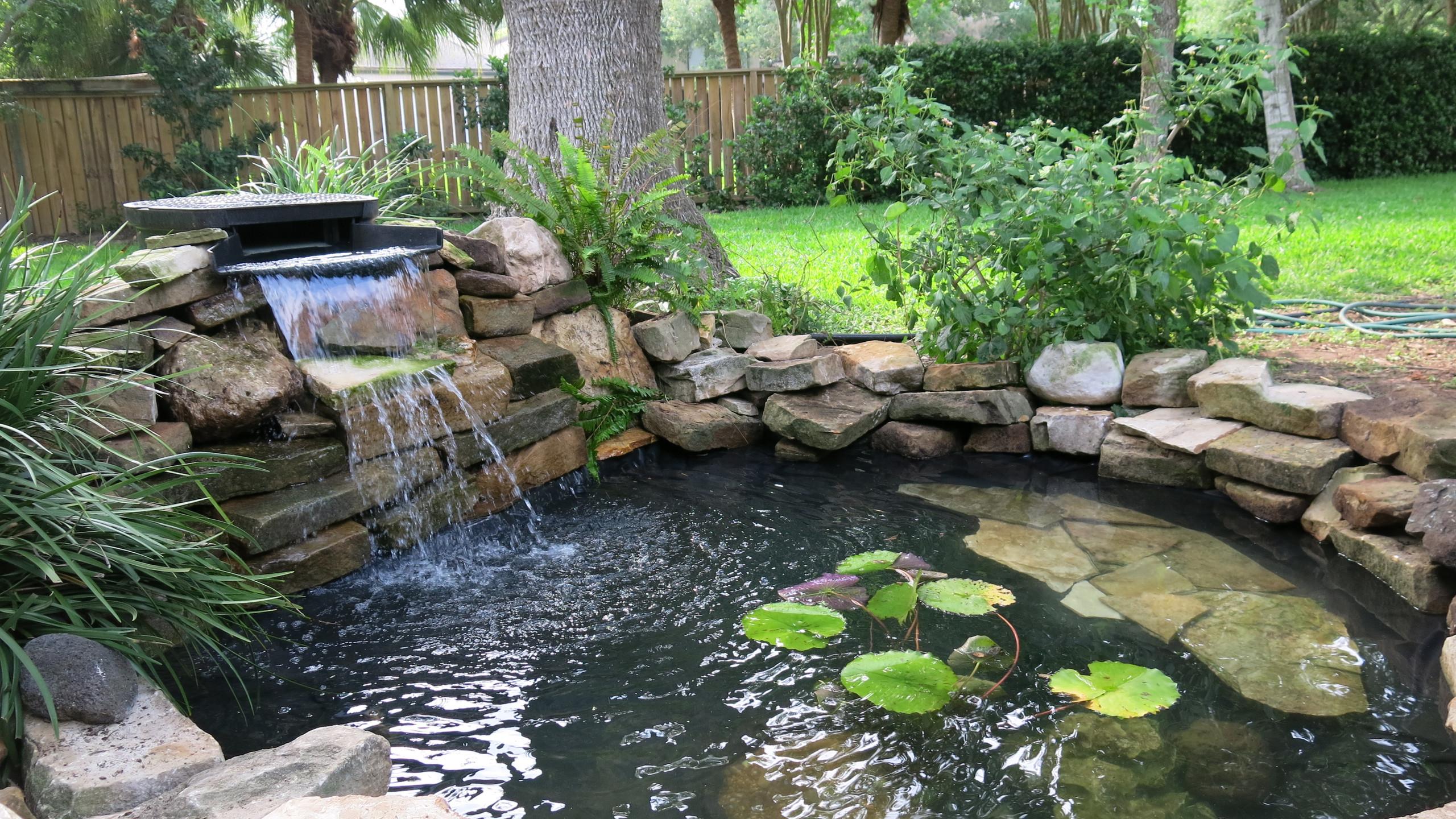 36-Finished Pond