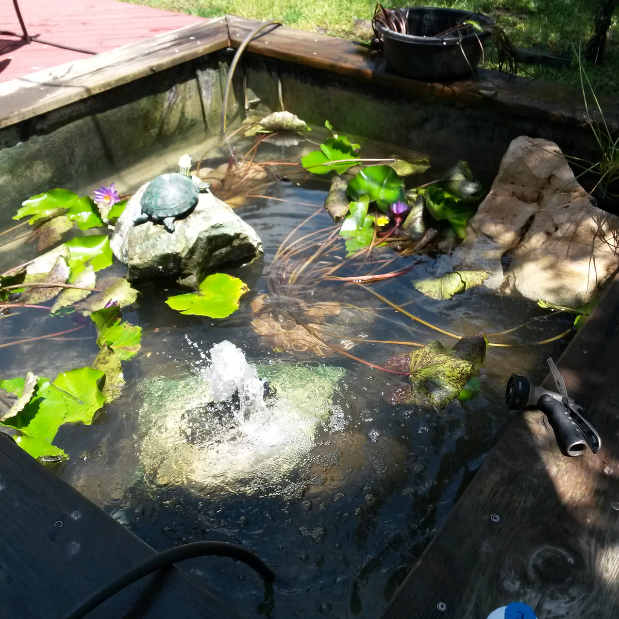 9-Filling the Pond