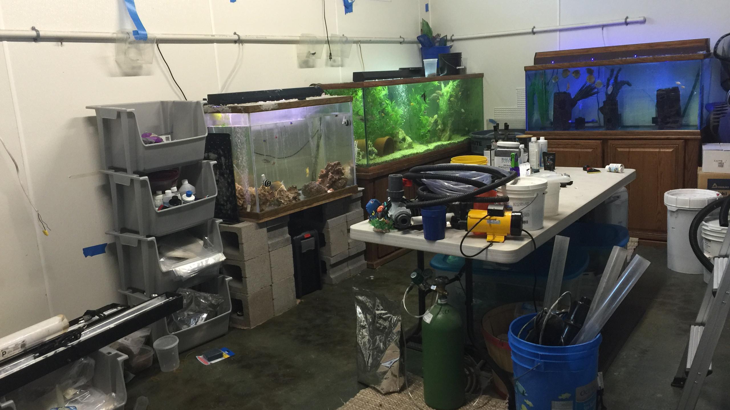 1-Original Aqua Room