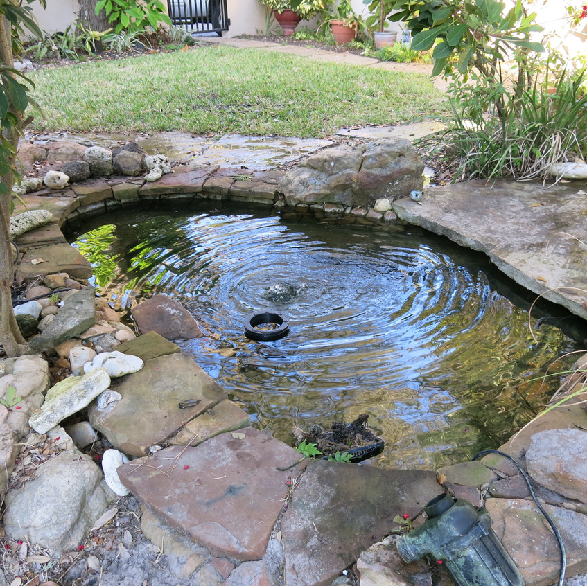 23-No Niche Skimmer Section of Pond Finished