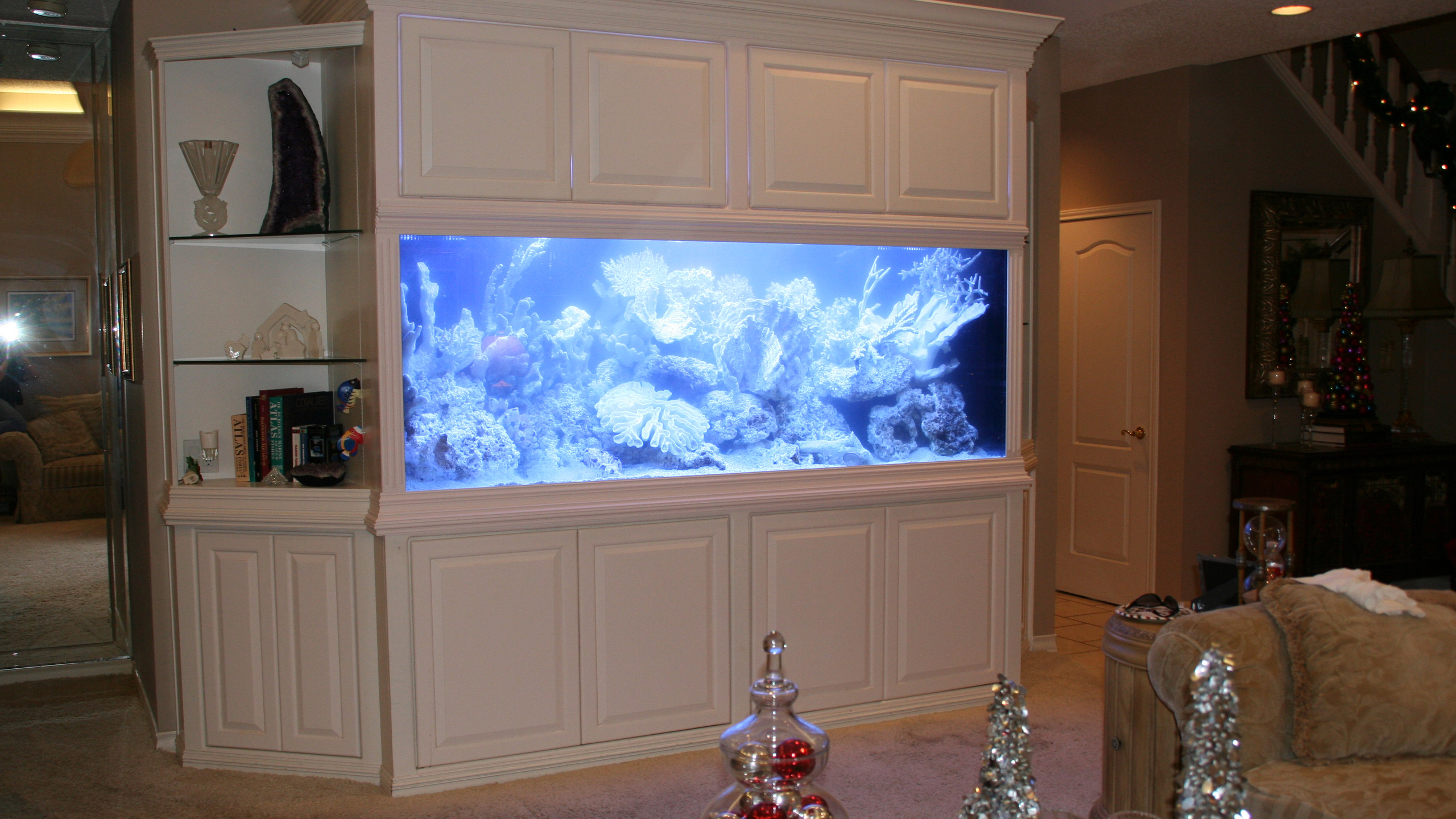 21-Finished In-Wall Aquarium Set-Up